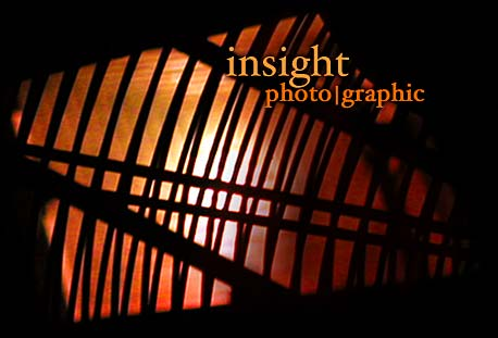 insight photo|graphic